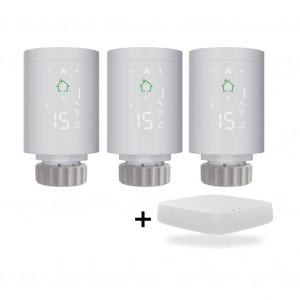Комплект для управления отоплением в 2-комн. квартире